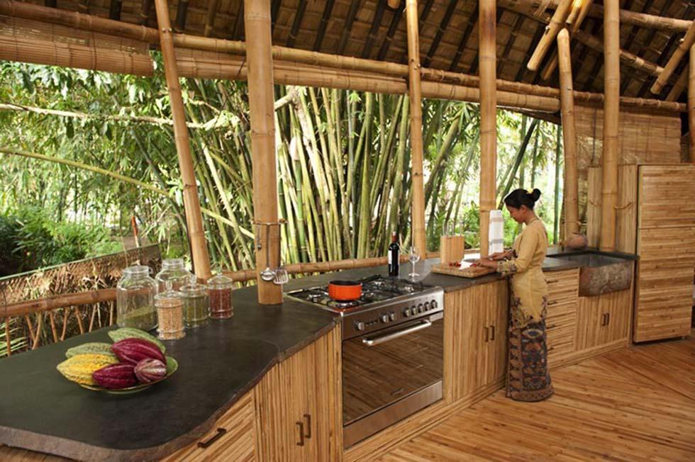 Corte di villavara i benefici del bambu gigante moso e for Bamboo coltivazione